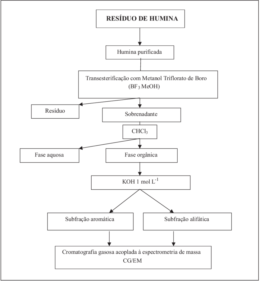 esquema ilustrando o processo