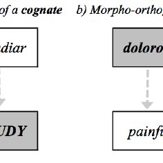 Possible mechanisms leading to cross-language masked