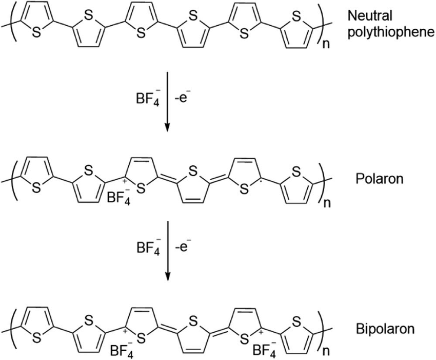 Bipolaron formation in polythiophene upon doping with BF 4