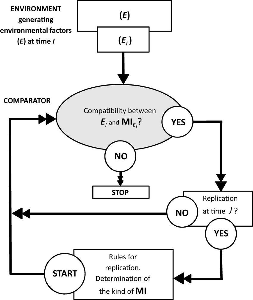 Process of Living (POL) flow diagram (from Haukioja 1982
