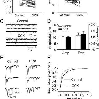 (PDF) Cholecystokinin Facilitates Glutamate Release by
