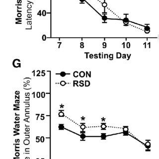 (PDF) Neuroinflammatory Dynamics Underlie Memory