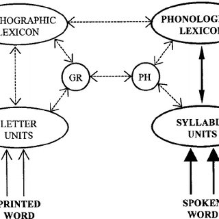 A multiple-route model of word comprehension in silent