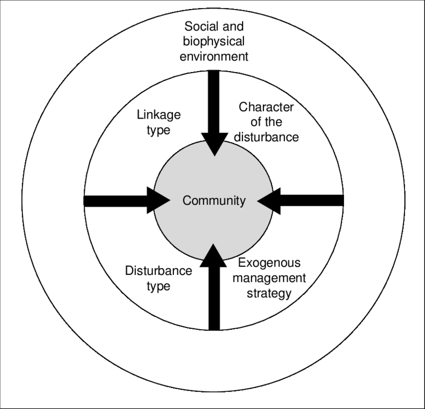 Communities do not exist in isolation from their