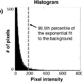 (PDF) Optical-sectioning microscopy of protoporphyrin IX