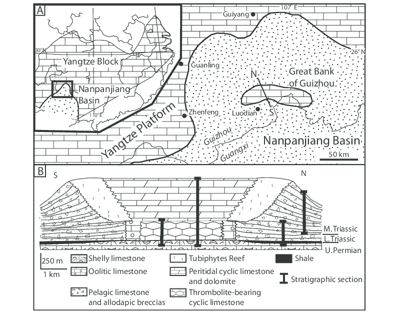 Geological setting. A, Schematic geological map of the