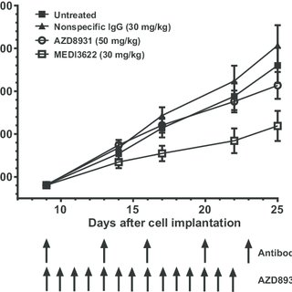 Synergy of doxorubicin or Doxil in combination with α-PD-1