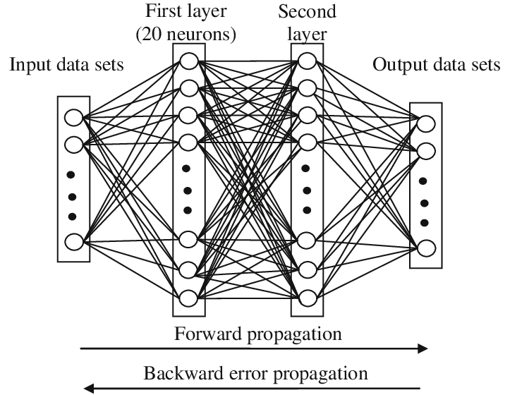 Structure of the back-propagation neural network