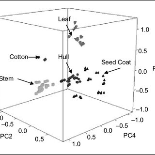 (PDF) Identification of cotton and cotton trash components