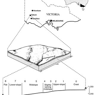 Soil features at Gatum. Numbers indicate piezometer