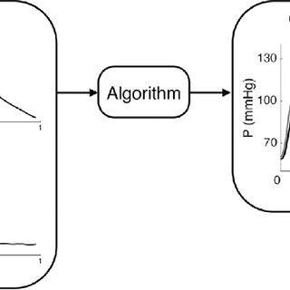 (PDF) Computational assessment of hemodynamics-based