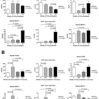 Changes in PPARδ gene expression and Fra-2 activation over