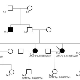 Case-Family 9. Incomplete penetrance pattern of ANK2 c