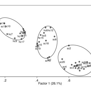 (PDF) Interrelationships between human capital and social