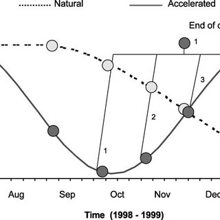 (PDF) Autumn conditioning of the oyster Crassostrea gigas
