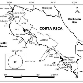 (PDF) Status and conservation of coral reefs in Costa Rica