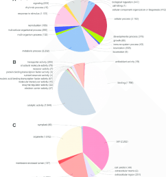 pie diagrams demonstrating the percentage of contigs and singlets generated in cap3 within the functional [ 850 x 936 Pixel ]