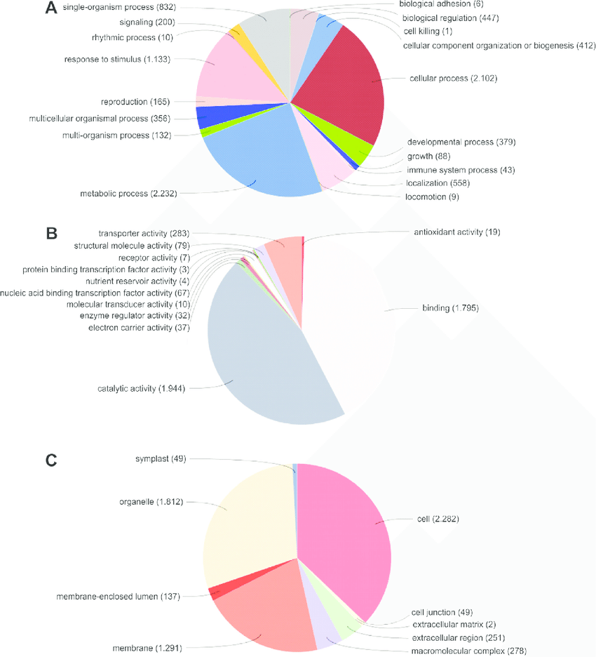 medium resolution of  pie diagrams demonstrating the percentage of contigs and singlets generated in cap3 within the functional