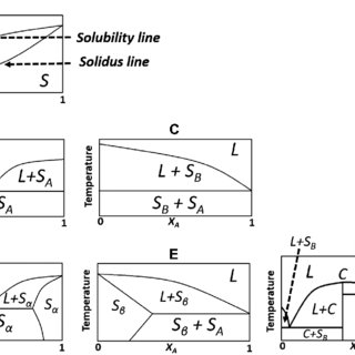 10 Solid-liquid phase diagram and thermograms for a