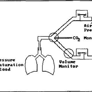 l. The total schematic of the anesthesia machine including