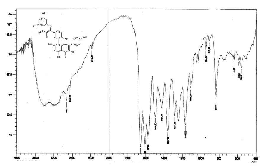 Figure S13. IR spectrum (KBr) of the compound 2 isolated