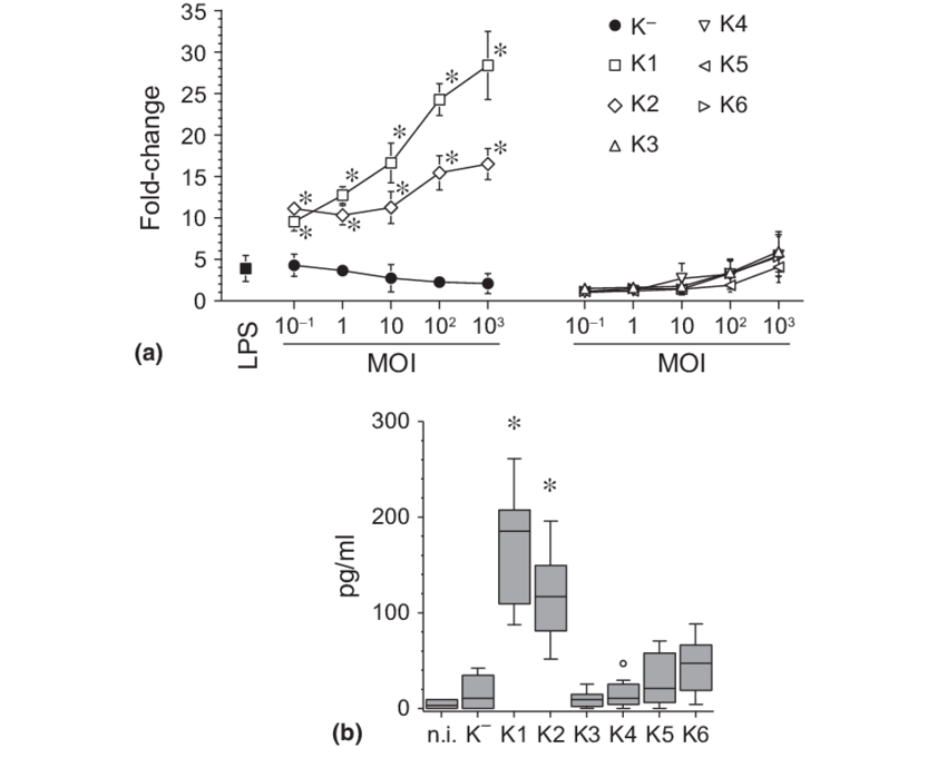 RANKL mRNA expression and protein secretion levels. (a