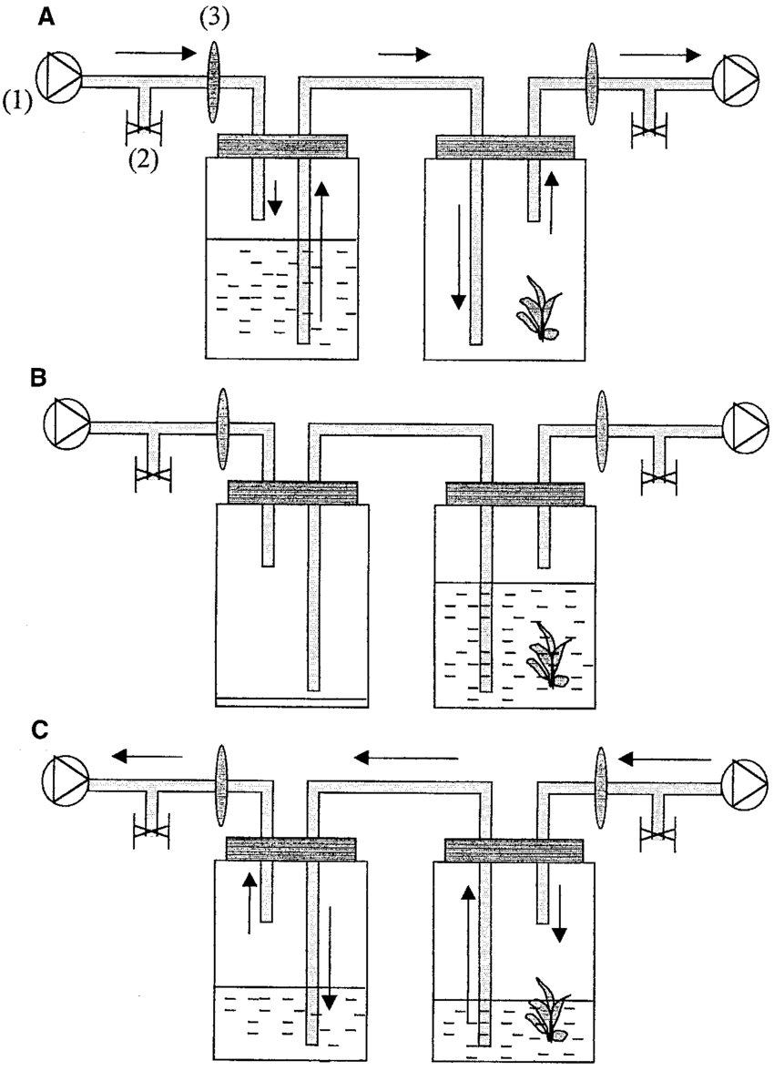 A-C Description of automated temporary immersion systems