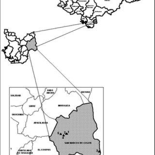 (PDF) 53 Espinal y Mora distribución de murciélagos