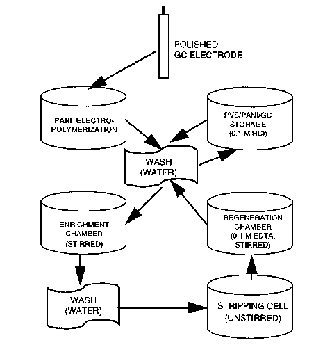 Schematic diagram for the mercury-free anodic stripping