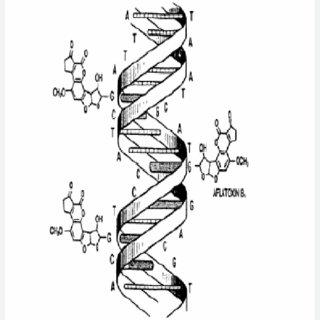 (PDF) Aflatoxinas: Mecanismos de toxicidad en la etiología