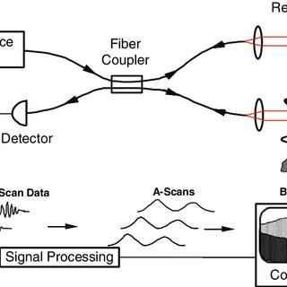 (PDF) Theory of Optical Coherence Tomography