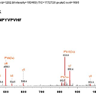 Figure S2. Annotated MS/MS spectrum of