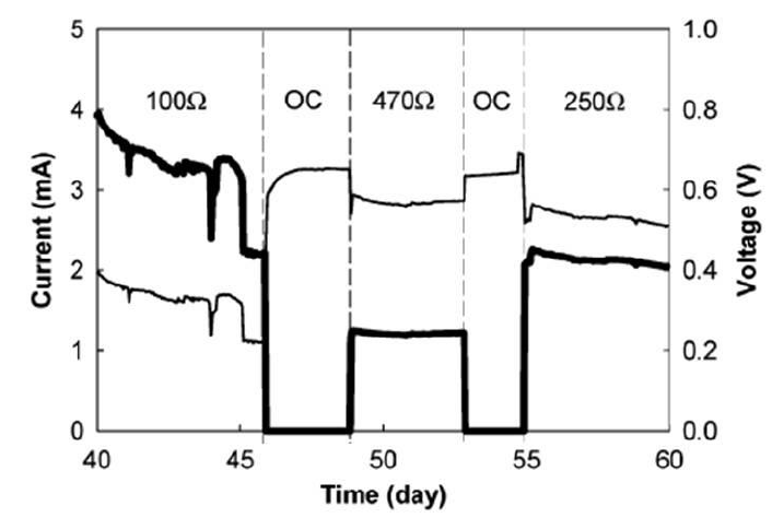 Current and Voltage in an Upflow Microbial Fuel Cell (He