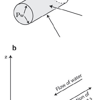 (PDF) Röthlisberger channel theory: Its origins and