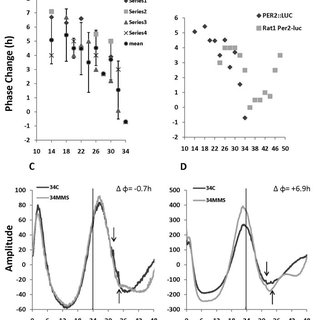DNA damage-induced phase-response curves (PRCs) in PER2