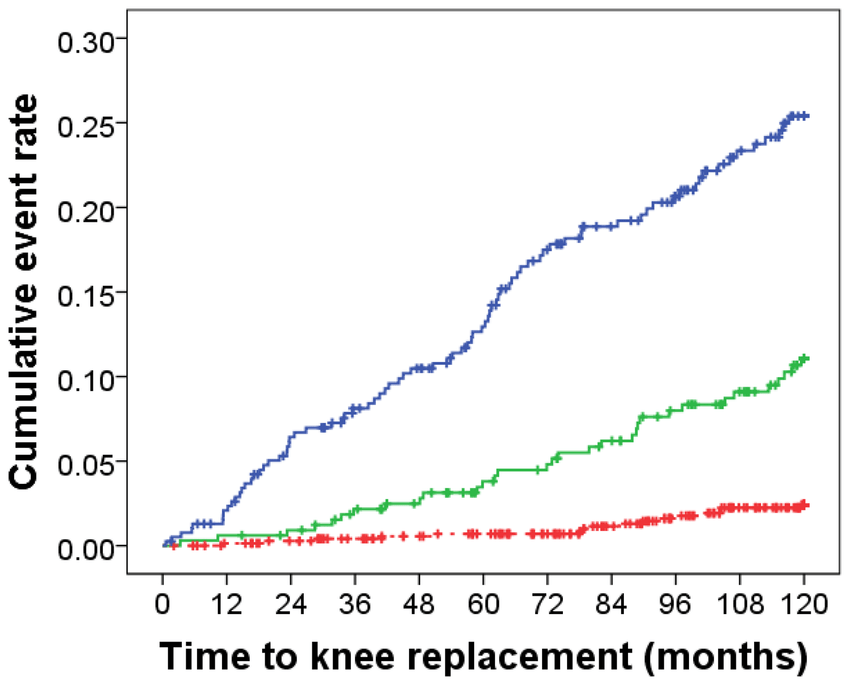 Kaplan Meier hazard plot for 10-year knee joint
