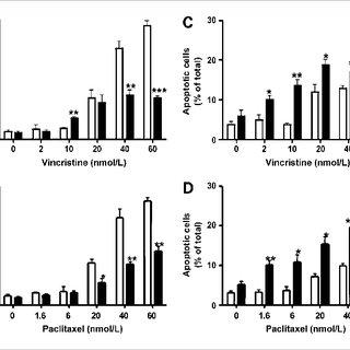 Proposed model of effects of βIII-tubulin on microtubule