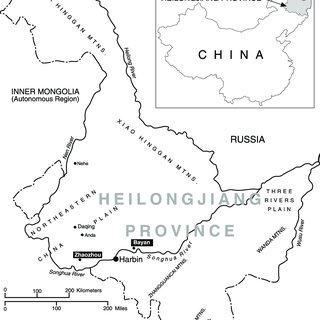 (PDF) Environmental Degradation in Heilongjiang: Policy