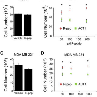 (PDF) Targeting connexin 43 with α-connexin carboxyl