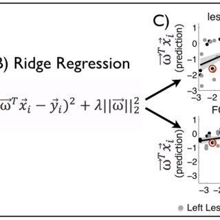 Lesion-deficit and FC-deficit model accuracies vary by