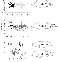 morphometric analysis of perch left panel canonical variates scores of perch in different clusters [ 850 x 1658 Pixel ]