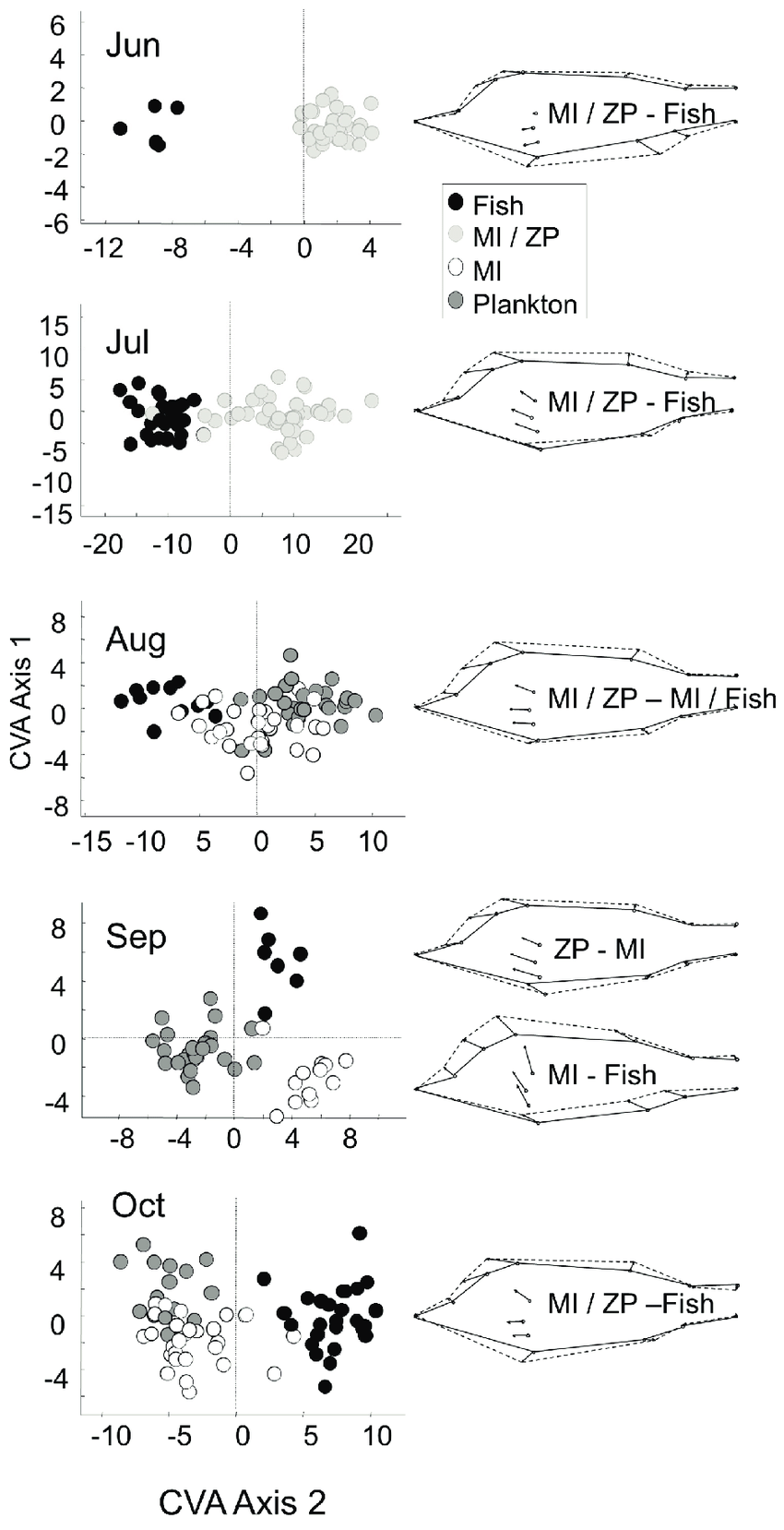 hight resolution of morphometric analysis of perch left panel canonical variates scores of perch in different clusters