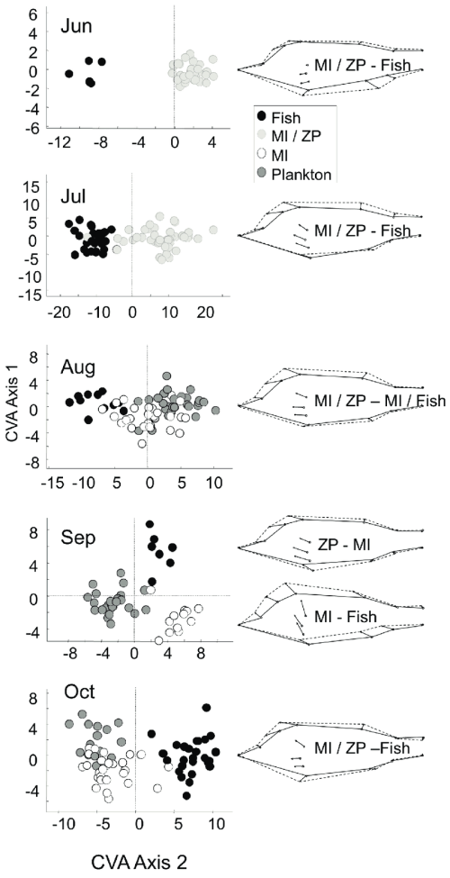 small resolution of morphometric analysis of perch left panel canonical variates scores of perch in different clusters