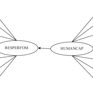 (PDF) Exploring nurtured company resilience through human