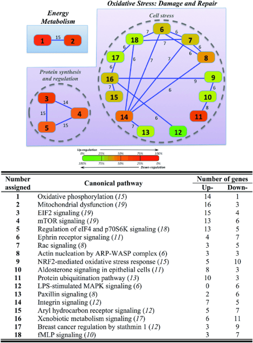 small resolution of overlapping network of hepatic response to hyper and hypo osmotic challenges in gilthead sea