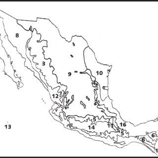 Análisis de Morafka et al. (1992). 14, Modelo que indica