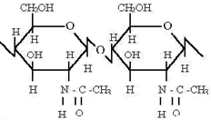 Chitin (chemical name: poly acetyl amino glucose