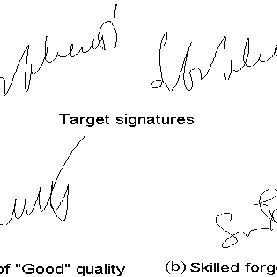 (PDF) BioSecure Signature Evaluation Campaign (ESRA'2011