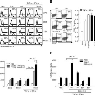 In vivo migration of PGE2-treated DCs is MMP-9 dependent
