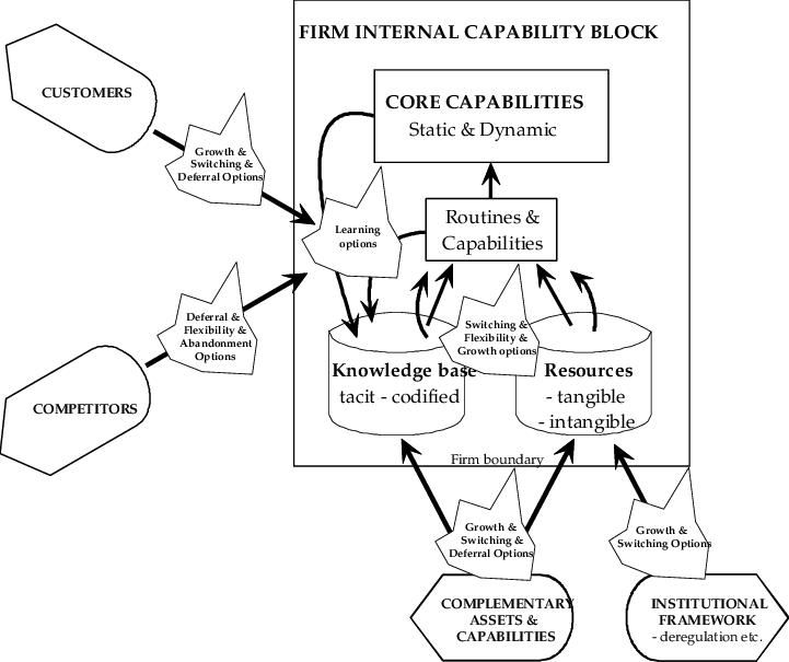 Strategic options as results of interplay between internal